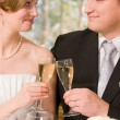 Bride and groom toasting - Stock Photo