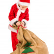 Stock Photo: Boy and Christmas sack