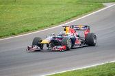 Daniel Ricciardo F1 driver of Scuderia Toro Rosso — Stock Photo