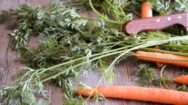 Fresh carrots — Stockvideo