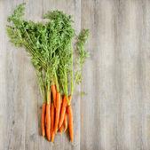 Fondo de zanahorias frescas — Foto de Stock