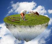коровы в небе — Стоковое фото