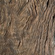 Foto Stock: Antique wood seasoned