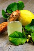 Roccoco and Limoncello liqueur — Stock Photo