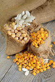 Nuts and grain cashews — Stock Photo