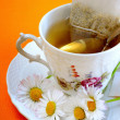 Chamomile — Stock Photo #41197793
