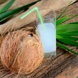 Coconut and milk — Stock Photo #41429915