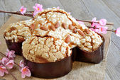 Colomba easter cake — Stock Photo