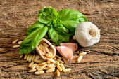Ingredients for pesto Genovese — Stock Photo