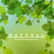 Fresh green leaves on natural background. — Stock Vector
