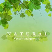 Fresh green leaves on natural background. — Stockvector
