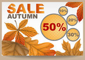 Autumn sale. — Vector de stock