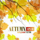 Fondo de otoño. — Vector de stock