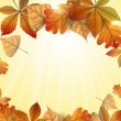 Autumn background with leaves. — Stock Vector #14325071