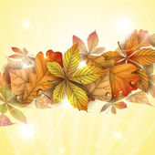 Autumn background with leaves. — Cтоковый вектор