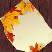 Autumn background with leaves. — Stock Vector