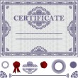 Certificate Template with additional elements. — Stock Vector #20249717