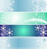 Set of winter seasonal banners. — Stock Vector
