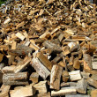 Stock Photo: Large woodpile