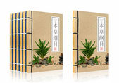 Ancient Chinese medical books (clipping path) — Stock Photo