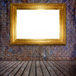 Stockfoto: Gold photo frame