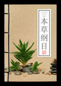 Ancient Chinese medical books (clipping path) — Стоковое фото