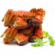 Steamed Chinese Lake Crab  — Stock Photo