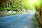 Asphalt road through the forest — Stock Photo
