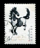Postage stamp printed running horse — Stock Photo