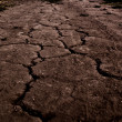 Cracked road — Stock Photo