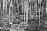 Icicles against a brick wall — Stok fotoğraf