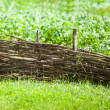 Stock Photo: Wicker fence among green grass