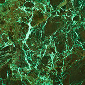 Marble in shades of green — Stock Photo