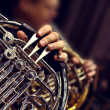 Man playing the french horn — Stock Photo #44862473