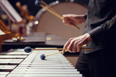 Sticks hitting a xylophone — Stock Photo