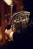 Man playing the French horn — Stock Photo