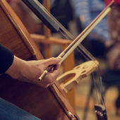 Hand playing the contrabass — Stock Photo