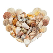 Seashells stacked in the form of heart — Stock Photo