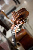 Detail of the fingerboard bass — Stock Photo
