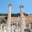 Pillars at Ephesus, Izmir, Turkey, Middle East — Stock Photo #22369195