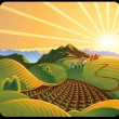 Summer solar rural landscape — Stock Photo