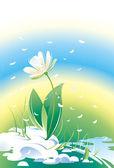 Blumen schneeglöckchen — Stockvektor
