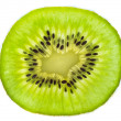 Fresh juicy kiwi fruit — Stock Photo
