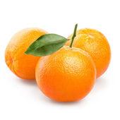 Orange fruits — Stockfoto