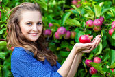 A woman in the apple garden — Stock Photo