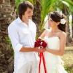 Bride and groom near palm-tree — Stock Photo #33636041