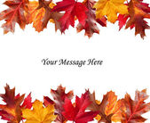 Fall leaves above and below a message — Stock Photo
