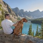 Happy man and dog — Stock Photo