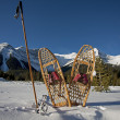 Vintage snowshoes and ski poles — Stock Photo