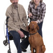 Senior couple with a dog — Stock Photo